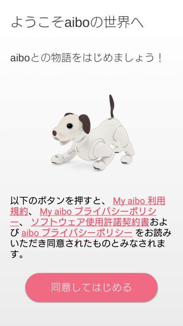 My aibo